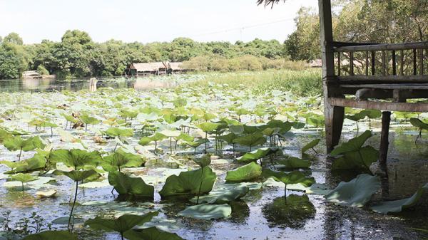 Tiềm năng du lịch sinh thái ở Quảng Trị