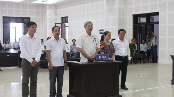 Bị cáo đề nghị đưa tang vật vụ án ra tòa trong vụ buôn lậu gỗ của công ty Ngọc Hưng ở Quảng Trị
