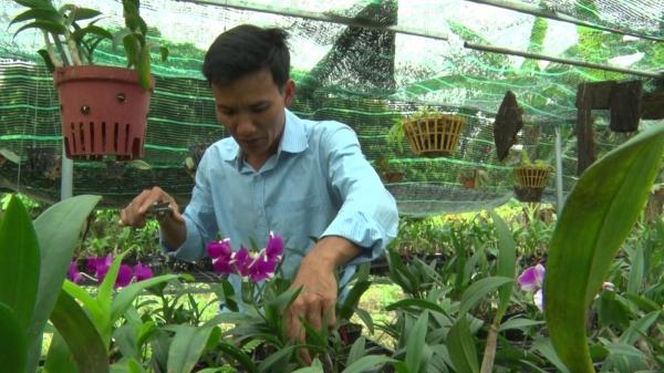 Quảng Trị: Thu nhập cao từ nghề trồng lan