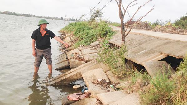 Cần sớm khắc phục sạt lở tuyến đê biển ở Bắc Phước