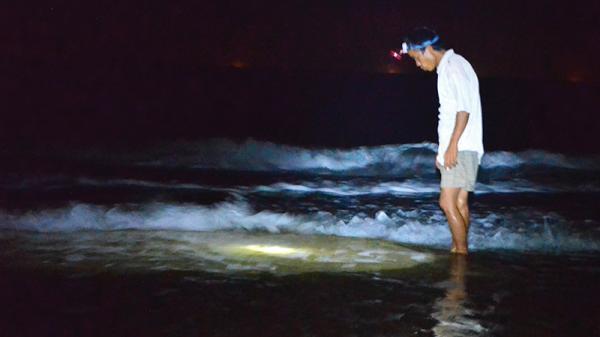 Về Gio Linh lội biển bắt mực trùm
