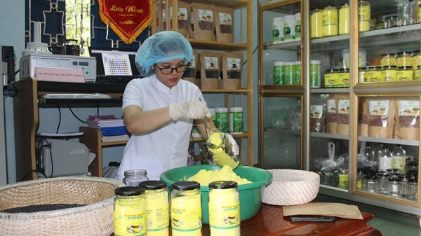 Cô gái Quảng Trị với giấc mơ khởi nghiệp từ nông sản sạch
