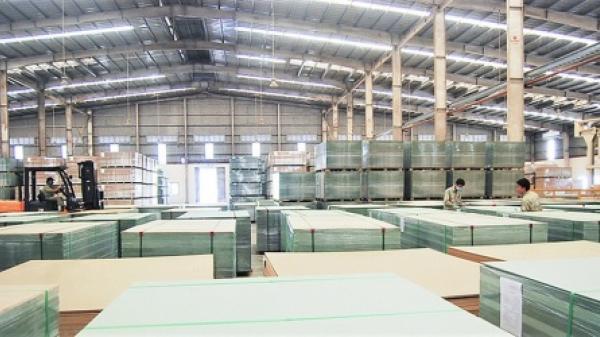 Quảng Trị: Cấp chủ trương đầu tư cho Nhà máy sản xuất gỗ ghép thanh và dăm băm