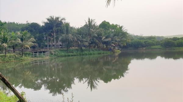 Quảng Trị: Cận cảnh trang trại trên đất rừng của giám đốc công ty lâm nghiệp