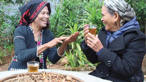 Thứ nước uống quý kỳ lạ ở vùng cao Quảng Trị: Uống đẹp da, lâu già