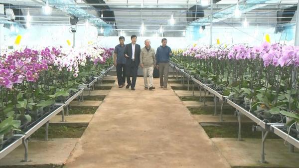 Sa Mù sẽ là trung tâm sản xuất hoa quả cao cấp