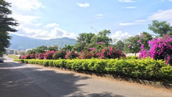 Lao Bảo sẽ là đô thị của hoa giấy