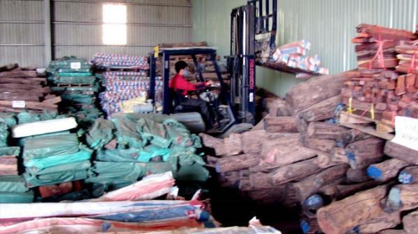Vụ 'kỳ án' gỗ trắc Quảng Trị: Công ty Ngọc Hưng khởi kiện Tổng Cục trưởng Tổng cục Hải quan