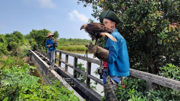 Thú chơi chim săn mồi ở Quảng Trị