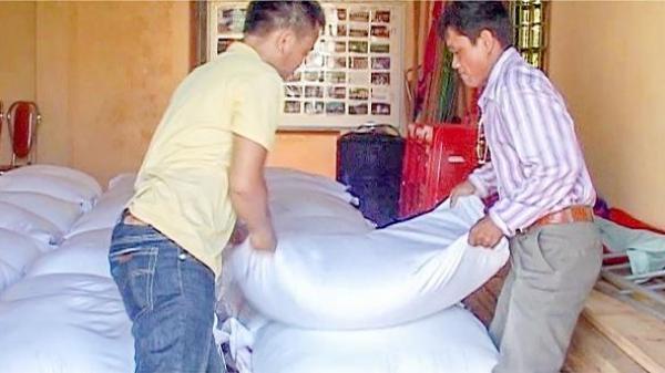 Vĩnh Linh: Phân bổ trên 4,7 tấn gạo cứu đói trong kỳ giáp hạt