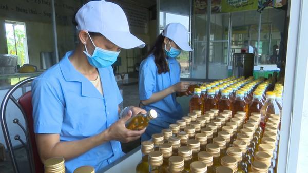 Cam Lộ: 7 sản phẩm được UBND tỉnh xếp hạng sản phẩm OCOP