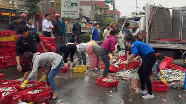 Người dân đội mưa gom hai tấn cá giúp tài xế bị lật xe