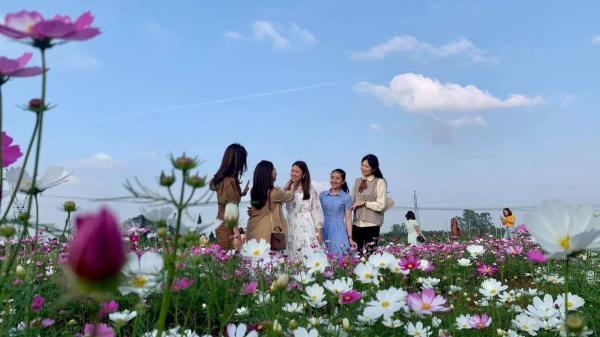 Nhiều điểm du lịch cộng đồng ở Quảng Trị thu hút khách du lịch dịp Tết Nguyên đán Tân Sửu