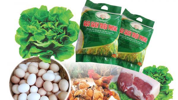 Xây dựng và nhân rộng các mô hình nông sản sạch ở Quảng Trị