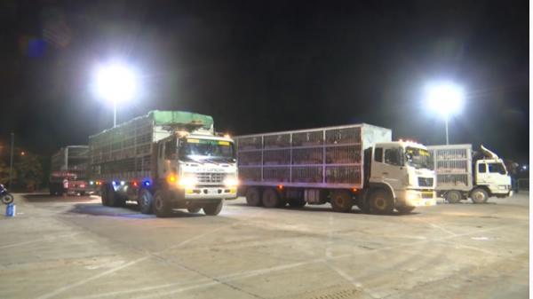 Hàng hóa xuất nhập khẩu qua Cửa khẩu Quốc tế Lao Bảo tăng mạnh