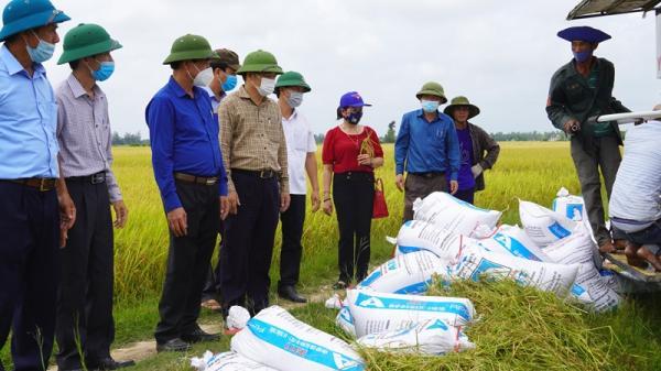 Chủ tịch UBND tỉnh Võ Văn Hưng kiểm tra sản xuất ở huyện Vĩnh Linh và Gio Linh