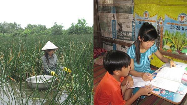Nữ sinh Sóc Trăng nhổ cỏ thuê nuôi ước mơ vào Đại học