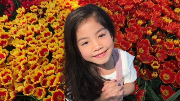 Sắp có lễ hội hoa tulip lớn nhất Việt Nam