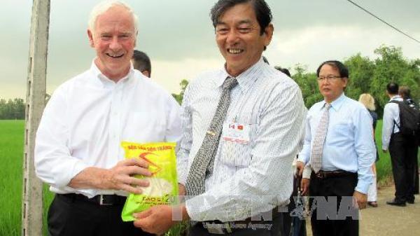 Người góp phần làm nên 'tiếng thơm' cho hạt gạo Sóc Trăng