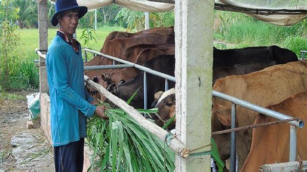 Hỗ trợ đồng bào Khmer Sóc Trăng an cư, lạc nghiệp