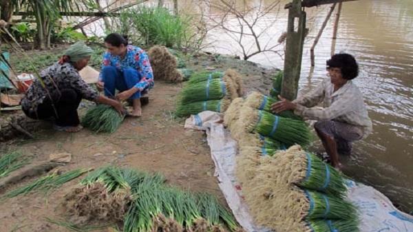 'Phao cứu sinh' cho người nghèo ở Sóc Trăng