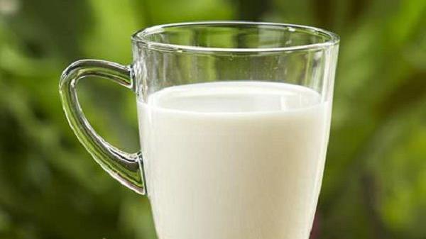 MẸO HAY: Đem sữa thừa tưới cây và cái kết ngoài sức tưởng tượng