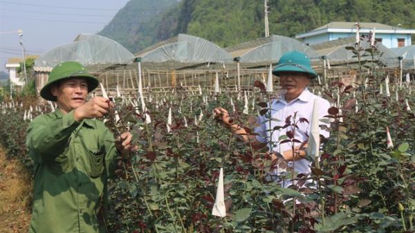 Chiềng Xôm, Sơn La phát triển kinh tế, góp phần xây dựng NTM
