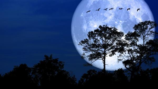 Siêu trăng đẹp và sáng nhất năm sẽ xuất hiện đúng vào rằm tháng Giêng