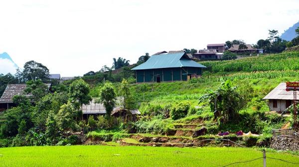 Xử lý nghiêm việc xâm hại Danh thắng quốc gia ruộng bậc thang Sa Pa (Lào Cai)