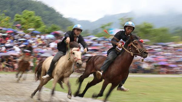 """Sa Pa sẽ tổ chức Lễ hội """"Vó ngựa trên mây"""""""