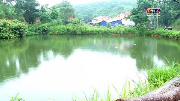 Lào Cai: Cảnh báo tình trạng cá c.hết do thiếu oxy