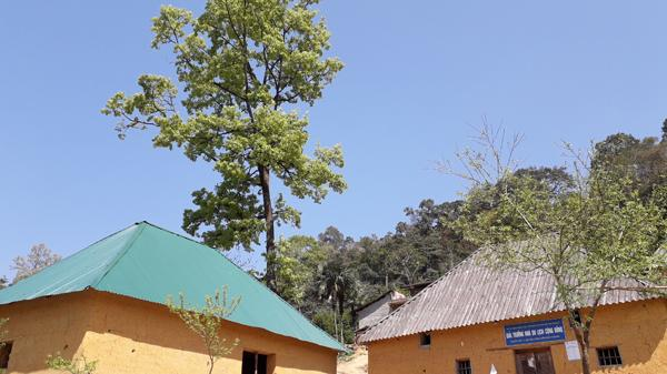 """Những """"ngôi nhà cổ tích ở xứ xở thần tiên"""" nơi vùng cao Bát Xát (Lào Cai)"""