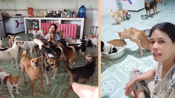 """Chân dung """"nữ hiệp"""" làm mẹ của hàng trăm con chó, mèo """"cho không ai thèm lấy"""""""