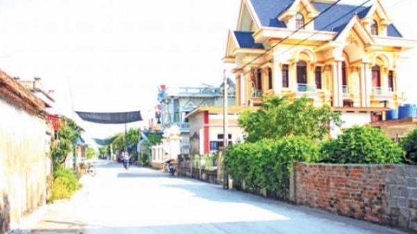 Thái Bình: 186 xã được công nhận đạt chuẩn nông thôn mới