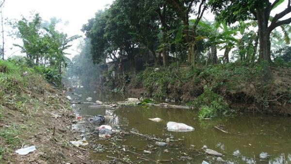 """Hưng Hà (Thái Bình):  Bãi rác đầu tư tiền tỷ """"biến"""" thành trại nuôi bò"""