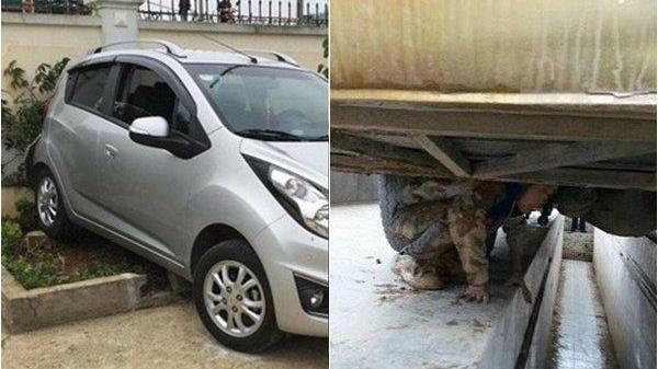 Vụ cô giáo lùi xe khiến 1 học sinh tử vong: 1 em dưới gầm xe may mắn thoát chết vì… khóc