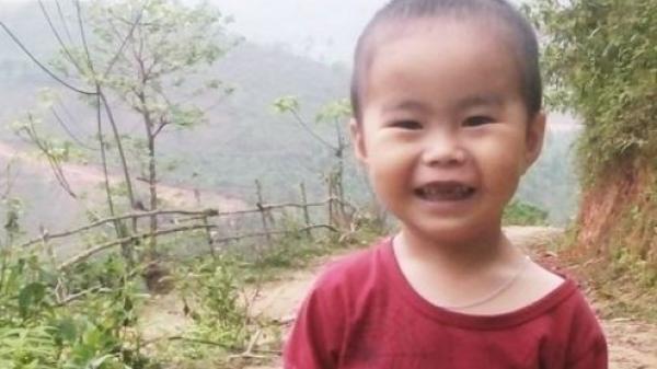 Cao Bằng:Em bé trên đồi hát nhạc bolero khiến người nghe thích thú