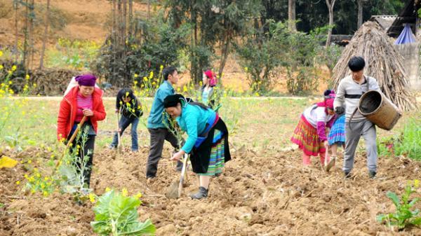 Hà Giang: Đồng bộ giải pháp giảm nghèo ở Mèo Vạc
