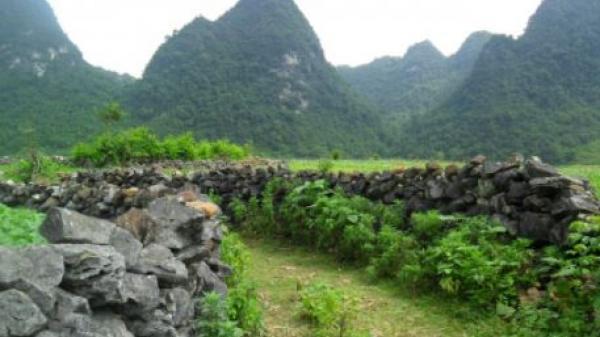 Nét đẹp độc đáo bên những tường đá tại Cao Bằng khiến hàng ngàn người mê mẩn