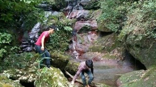 Quảng Ninh: Phát hiện một hang động với nhiều mảnh hoá thạch kỳ lạ