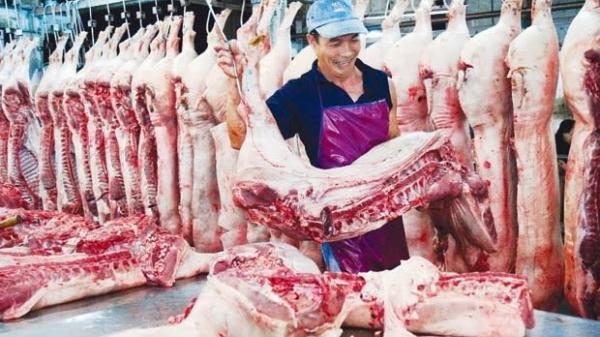 Thái Bình giá lợn ngày 22/8 tăng nhẹ ở mức 500 - 1.500đ/kg