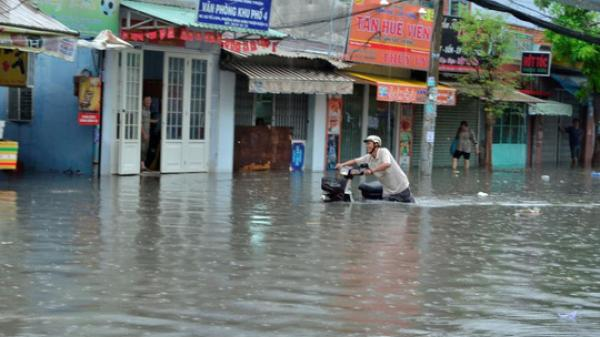 Gần 1/3 diện tích của Thái Bình và Nam Định có thể bị nhấn chìm do nước biển dâng