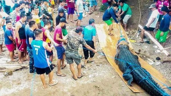 Tìm thấy t.hi th.ể thanh niên mất tay và chân trái, vài ngày sau bắt được cá sấu khủng bụng to và bí mật khủ.ng khi.ếp