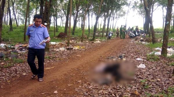 Thi thể người đàn ông bán vé số trong lô cao su ở Đồng Nai