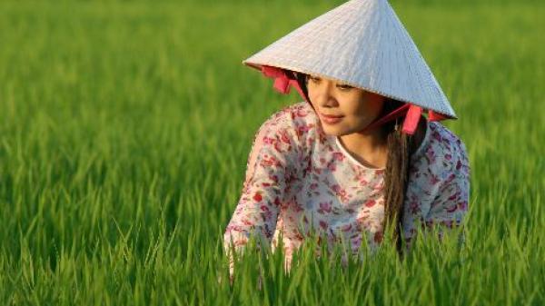 """Lời mẹ dặn con gái nhớ """"đừng"""" yêu người Thái Bình"""
