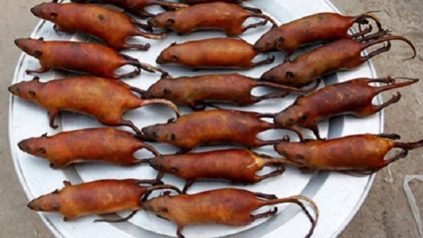 Những món thịt chuột lạ lùng ở quê lúa