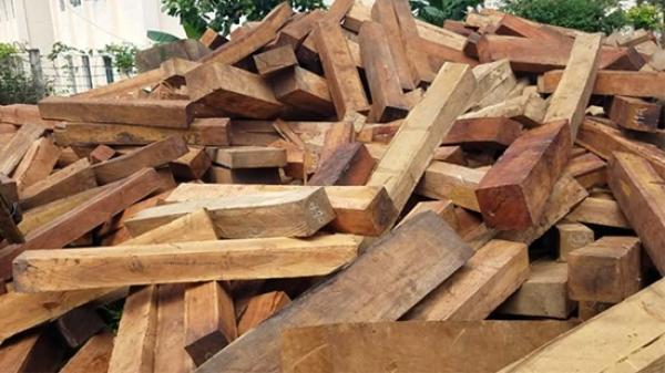 Gia Lai: Nửa đêm mật phục, bắt vụ vận chuyển gỗ không rõ nguồn gốc