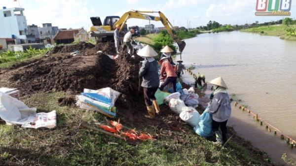 Thái Thụy (Thái Bình) thiệt hại hơn 130 tỷ đồng sau mưa lũ