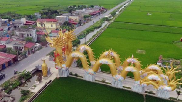 Thái Bình sẽ yêu cầu chủ điện thờ di dời đôi rồng khổng lồ