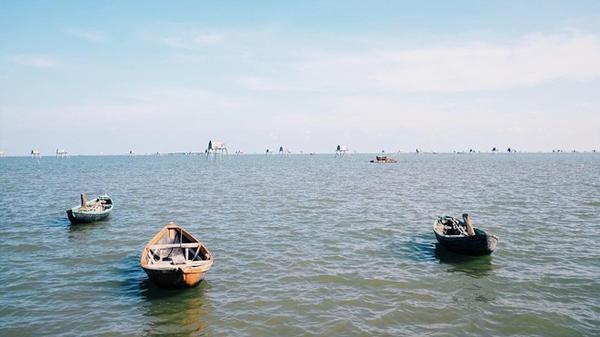 Cuối tuần, về biển Đồng Châu – Thái Bình để tận hưởng thiên nhiên trong lành